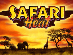 Safari Heat Slot Novoline